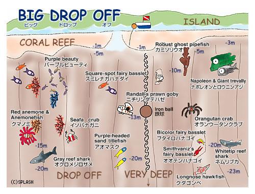 Map Big Drop Off Splash Palau Dive Center