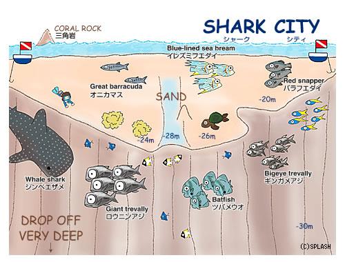 Map:Shark City -Splash Palau Dive Center